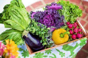 Légumes, Jardin, Récolte, Organiques, Vert, Jardinage